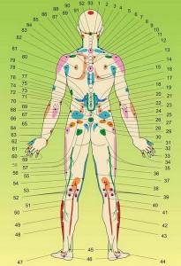 Meridians of Body